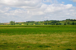 Grünlandwirtschaft in der nördlichen Randow-Welse