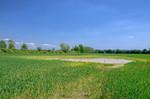 Staunässe auf einem Feld