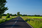 Straße durch ein Niedermoor
