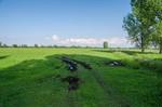 stark beschädigte Grasnarbe an einer Feldeinfahrt