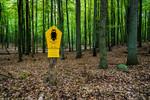 Naturschutzgebiet Grumsiner Forst