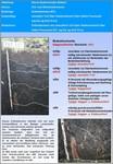 Bodensteckbriefe: Moore