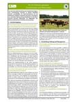 Steckbrief für Niedermoorbewirtschaftung bei unterschiedlichen Wasserverhältnissen: Nr. 02 - Extensiv genutzte Frischweiden und Mähweiden