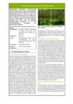 Steckbrief für Niedermoorbewirtschaftung bei unterschiedlichen Wasserverhältnissen: Nr. 04 - Schwarz-Erle (Alnus glutinosa) im Anbau als Kurzumtriebsplantage