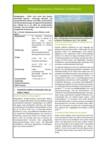 Steckbrief für Niedermoorbewirtschaftung bei unterschiedlichen Wasserverhältnissen: Nr. 07 - Extensiv genutzte Rohrglanzgras Feuchtwiesen (Phalaris arundinacea) für Futter- und energetische Verwertung