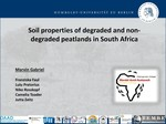 Soil properties of degraded and non-degraded peatlands in South Africa