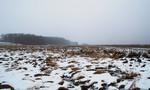 Moorflächen an der Trebel bei Eichenthal