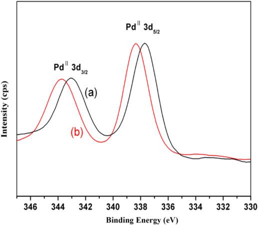 Reusable biomacromolecule-Pd complex catalyzed C–C cross-coupling reactions via C–S cleavage of disulfides