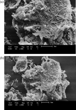 Thermodynamics of the nickel, cobalt and zinc removal from ethanolic solution by p-aminobenzoic acid intercalated on layered calcium phosphate