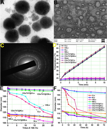 Carbon dot/TAT peptide co-conjugated bubble nanoliposome for multicolor cell imaging, nuclear-targeted delivery, and chemo/photothermal synergistic therapy