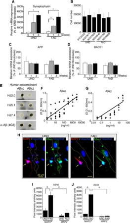 Directed Conversion of Alzheimers Disease Patient Skin Fibroblasts into Functional Neurons