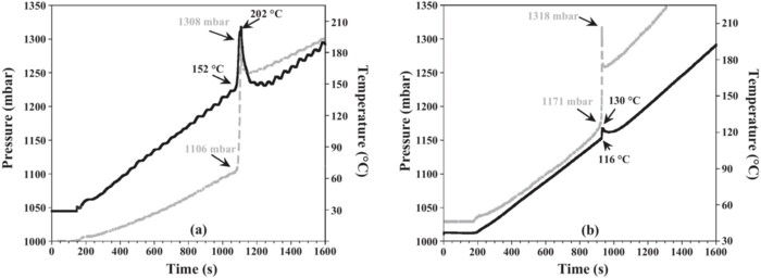 HAN and ADN as liquid ionic monopropellants: Thermal and catalytic decomposition processes