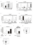 Gut Microbiota Is a Key Modulator of Insulin Resistance in TLR 2 Knockout Mice
