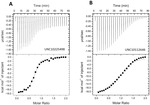 A High-Throughput Screening-Compatible Strategy for the Identification of Inositol Pyrophosphate Kinase Inhibitors