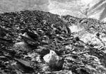 Oberflächenmoräne am Karlinger Gletscher (Glocknergruppe)
